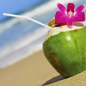 Drink out of a coconut - Bucket List Ideas