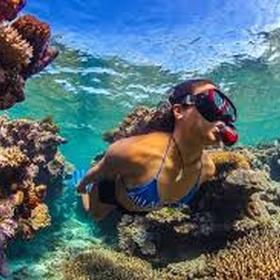 Snorkel in the Great Barrier Reef - Bucket List Ideas