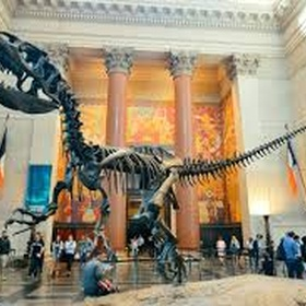 Sleep over at Museum of Natural History - Bucket List Ideas