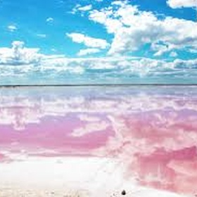Visit pink lakes of Las Coloradas, Mexico - Bucket List Ideas