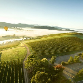 Drink wine in the Yarra Valley - Bucket List Ideas