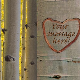 After I get married, carve our initials into a tree inside a heart - Bucket List Ideas