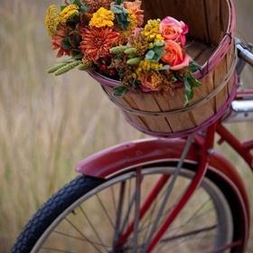 Buy a bicycle - Bucket List Ideas
