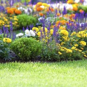 Have a beautiful garden - Bucket List Ideas