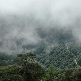 Visit a cloud forest in Eucador - Bucket List Ideas
