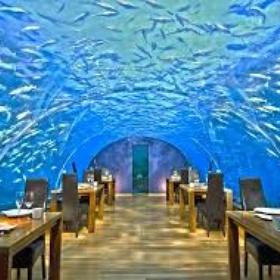 Dine at Ithaa-Underwater-Restaurant-Maldives - Bucket List Ideas