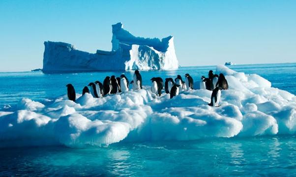 Go to Antarctica - Bucket List Ideas