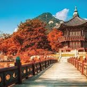 GO TRAVELLING SEOUL - Bucket List Ideas