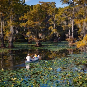 Visit Caddo Lake-Texas's Only Natural Lake and Largest Lake in the South - Bucket List Ideas