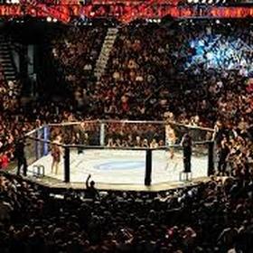 Attend an MMA event - Bucket List Ideas