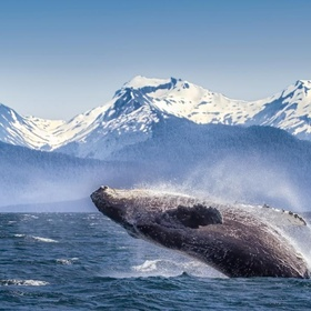 Visit Alaska - Bucket List Ideas
