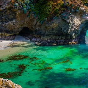 Visit Point Lobos in CA - Bucket List Ideas