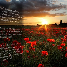 Go to Flanders Fields and visit the war graves - Bucket List Ideas
