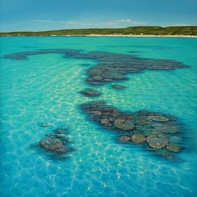 Snorkel Ningaloo Reef - Bucket List Ideas