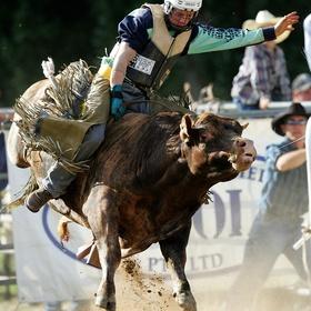 Attend a rodeo - Bucket List Ideas