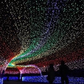 Walk through Japan's Tunnel of Lights - Bucket List Ideas