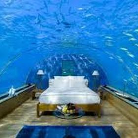 Stay at the Poseidon resort (Underwater) - Bucket List Ideas