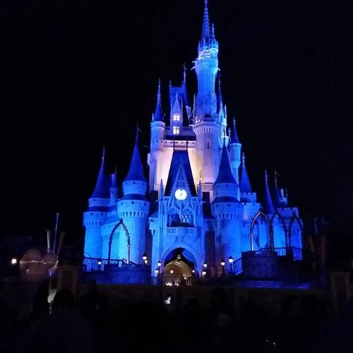 Visit Disney World: Magic Kingdom - Bucket List Ideas