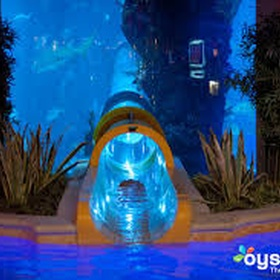 Slide down the Water slide at the Golden Nugget hotel - Bucket List Ideas
