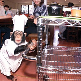 🍴 eat at a kayabukiya tavern in japan - Bucket List Ideas