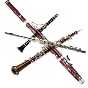 Play Bozza's wind quartet 'Trois pieces pour une musique de nuit' - Bucket List Ideas