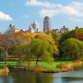 Have a picnic in Central Park, New York - Bucket List Ideas