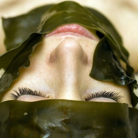 Get a seaweed wrap - Bucket List Ideas