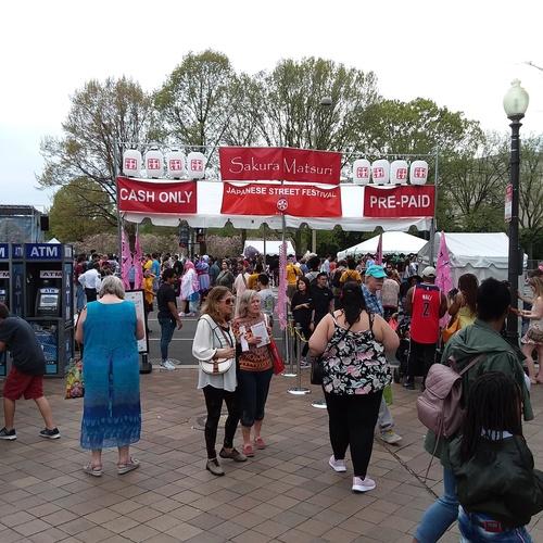 Attend the National Cherry Blossom Festival - Bucket List Ideas
