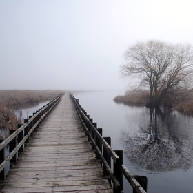 Visit Point Pelee National Park in Canada - Bucket List Ideas