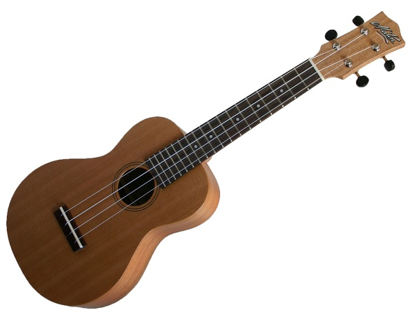Learn to play the Ukulele - Bucket List Ideas