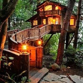 Holiday - Sleep in a Tree house - Bucket List Ideas