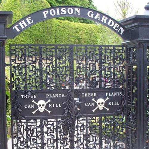 Visit Alnwick Gardens (Poison Garden) England - Bucket List Ideas