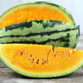 Eat a Yellow Watermelon - Bucket List Ideas