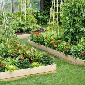 Assemble a raised garden bed - Bucket List Ideas