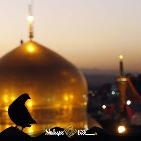 Go to Mashhad - Bucket List Ideas