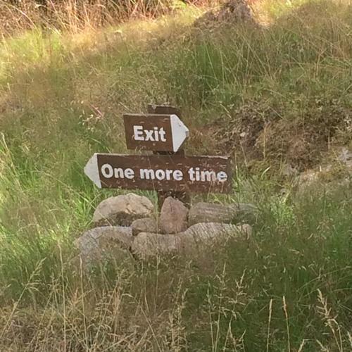 Moose safari - Bucket List Ideas