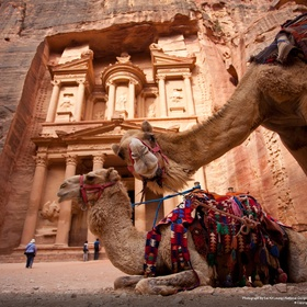 Reach Petra on a Camel - Bucket List Ideas