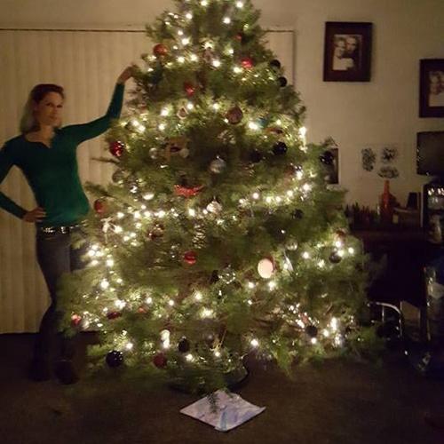 Cut down my own Christmas Tree - Bucket List Ideas
