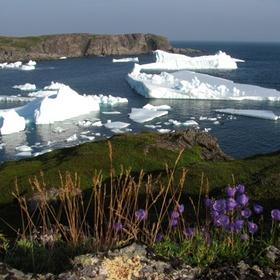 Float through Iceberg Alley in Newfoundland and Labrador - Bucket List Ideas