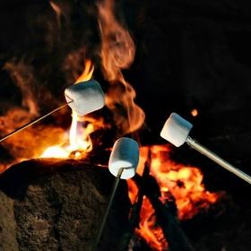 Roast Marshmallows Over a Campfire - Bucket List Ideas