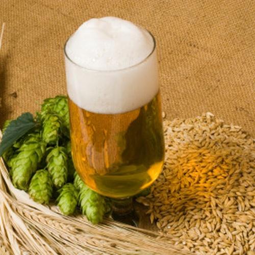 Домашнее пиво из хмеля рецепт приготовления в домашних условиях