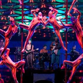 Attend a Cirque de Soleil Show - Bucket List Ideas