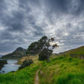 Ga naar Nieuw Zeeland - Bucket List Ideas