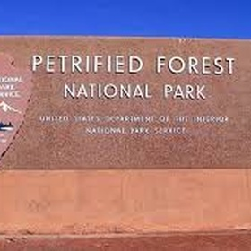 Visit the Petrified Forest - Bucket List Ideas