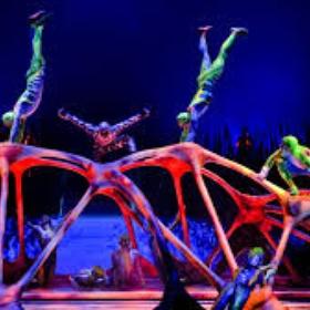 Attend Cirque du Soleil - Bucket List Ideas