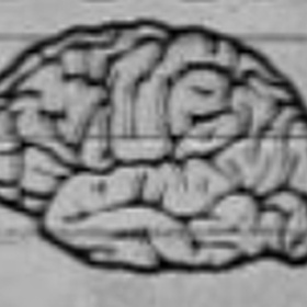 Get a psychology job researching happiness - Bucket List Ideas