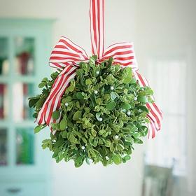 Kiss Her Under the Mistletoe - Bucket List Ideas