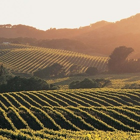 Visit Napa Valley - Bucket List Ideas