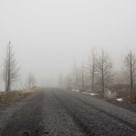 Drive down 5 haunted roads in America - Bucket List Ideas