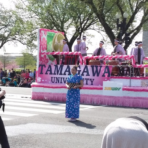 Attend the National Cherry Blossom Parade - Bucket List Ideas